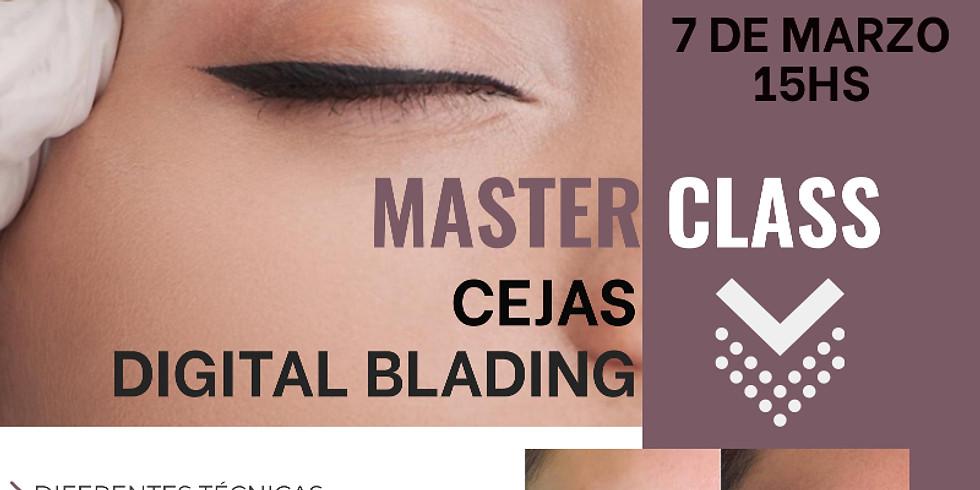 MASTER CLASS Cejas, Digital Blading