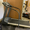 Thumbnail: PACEMASTER Gold Elite Treadmill