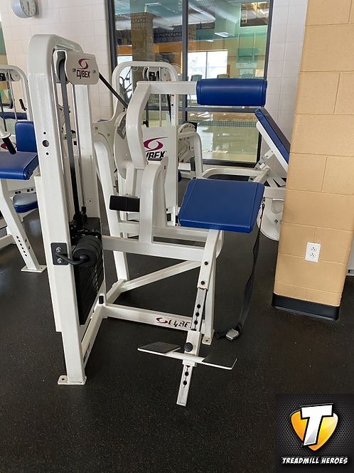 CYBEX Selectorized Back Extension Machine