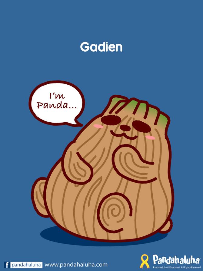 I'm Panda...