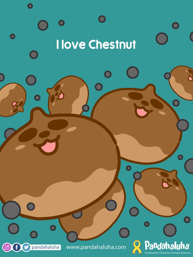 Pandahaluha - I love chestnut