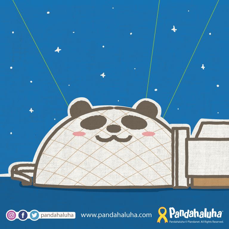 Pandahaluha - 七夕觀星