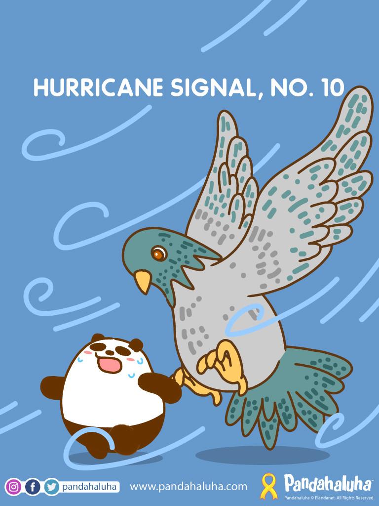 Pandahaluha - Hurricane Signal, No.10
