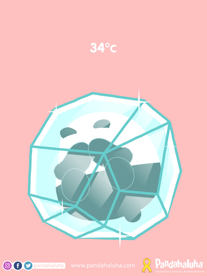 34 Degrees Celsius!