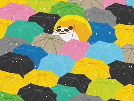 風雨中抱緊自由