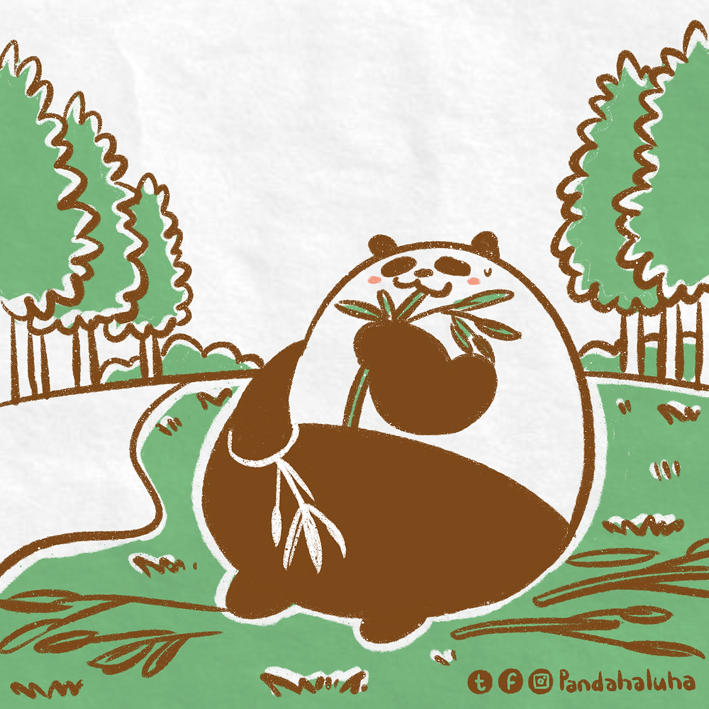 Pandahaluha - 獨自食竹