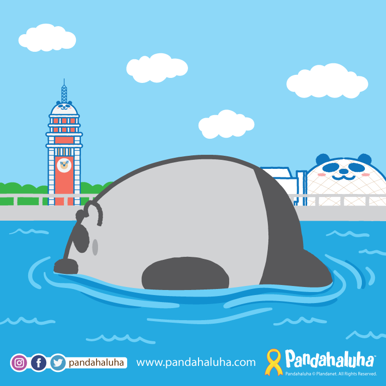 Pandahaluha - 漂浮
