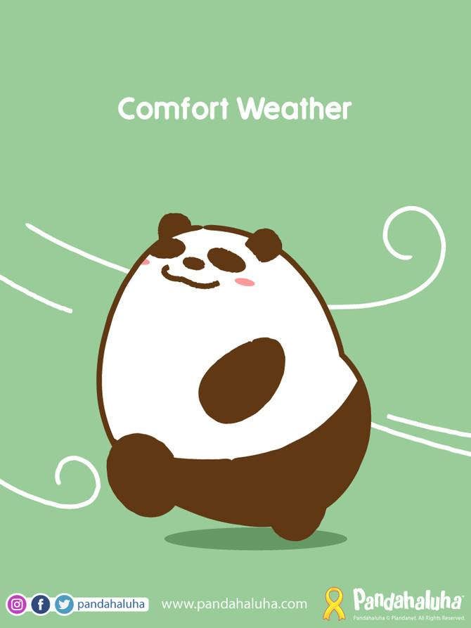Comfort Weather