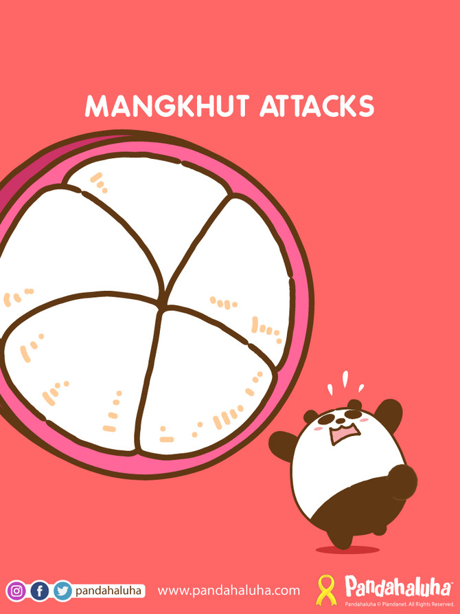 Mangkhut Attacks