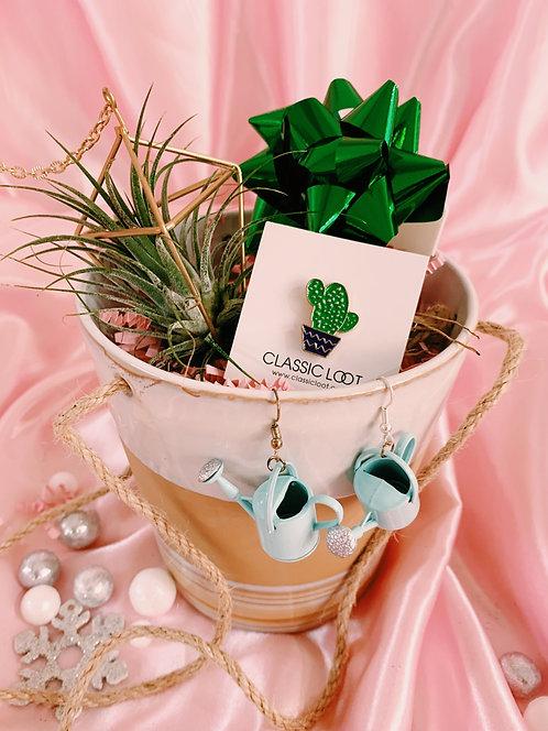 Plantaholic Box Set