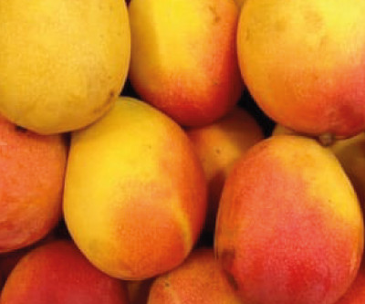 Mangos - The Love Fruit!