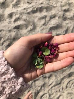 rose petal hand.jpg