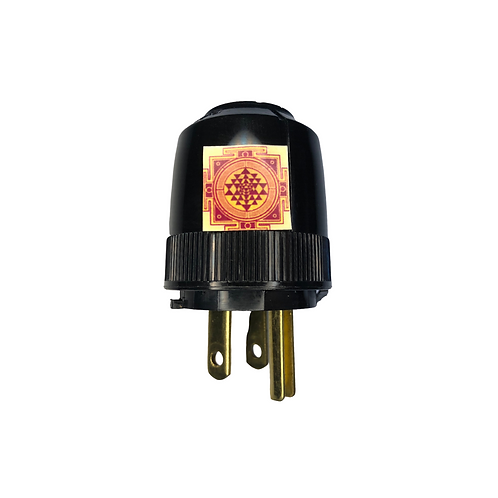 Whole House EMF Protection Plug (Consult)