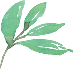 Green_leaves_01.png