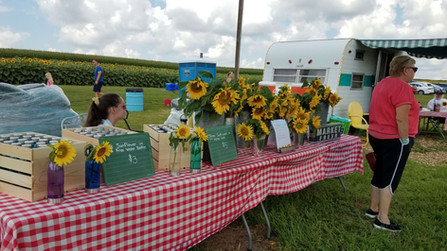 Purchase sunflowers