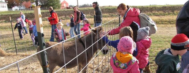 Creekbed Farm donkey visit