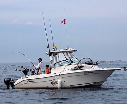 Salmon Limited Sportfishing Niagara