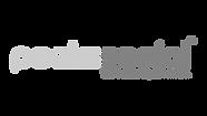 Peeks Social Logo