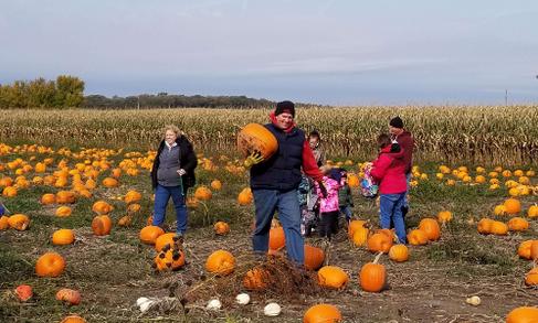 Creekbed Farmacy pumpkin patch