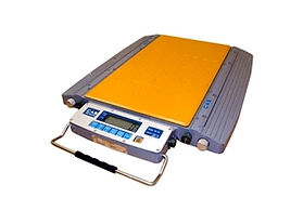 Wheel Weighers Scale