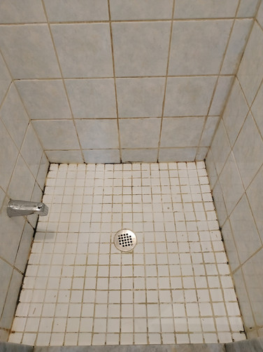 Before Shower Stall Cleaning