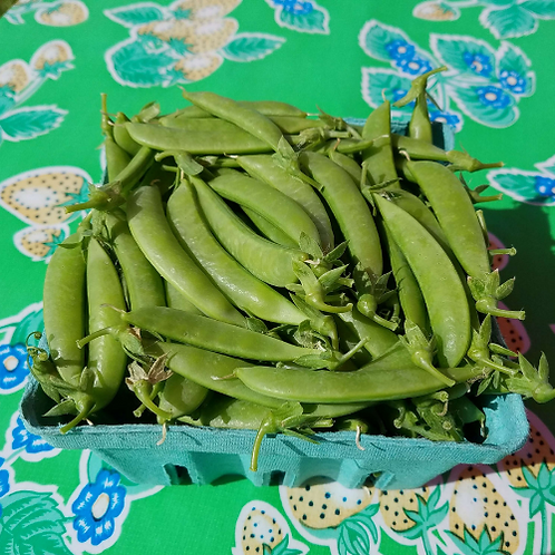 U- Pick Sugar Snap Peas