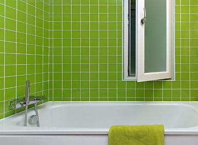 shower and bathroom maintenance