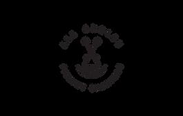 All Angles Fishing Charter Logo