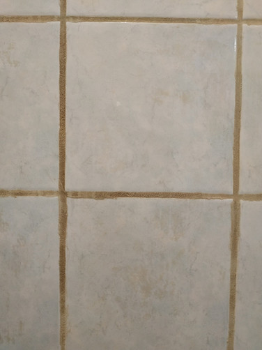 Before Shower Grout Close-up
