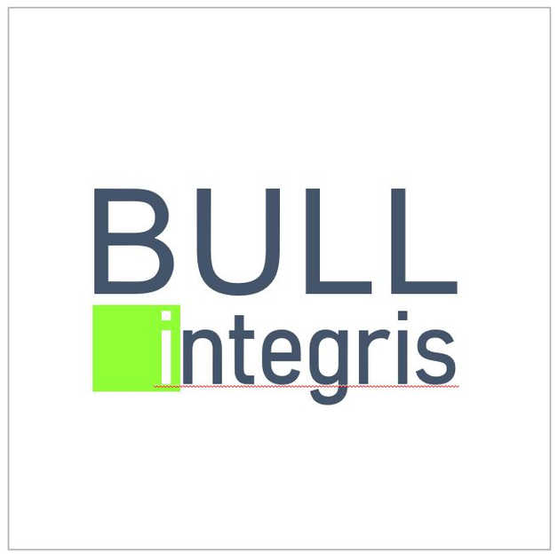 Bull.JPG