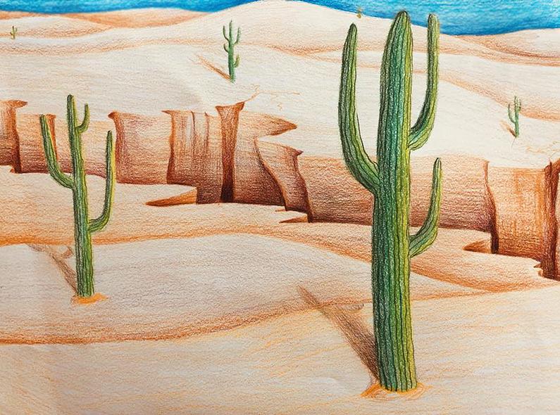 """""""Desert"""""""