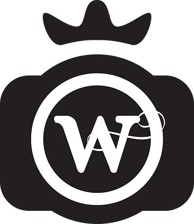 AWP logo just camera.png