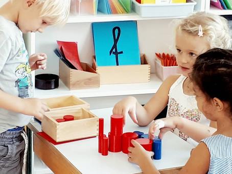 La pédagogie Montessori et le cerveau des enfants