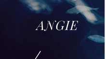 Párrafo de la novela Angie