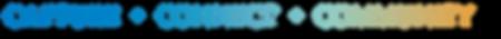 LINDSAY website CAPTURE CONNECT COMMUNIT