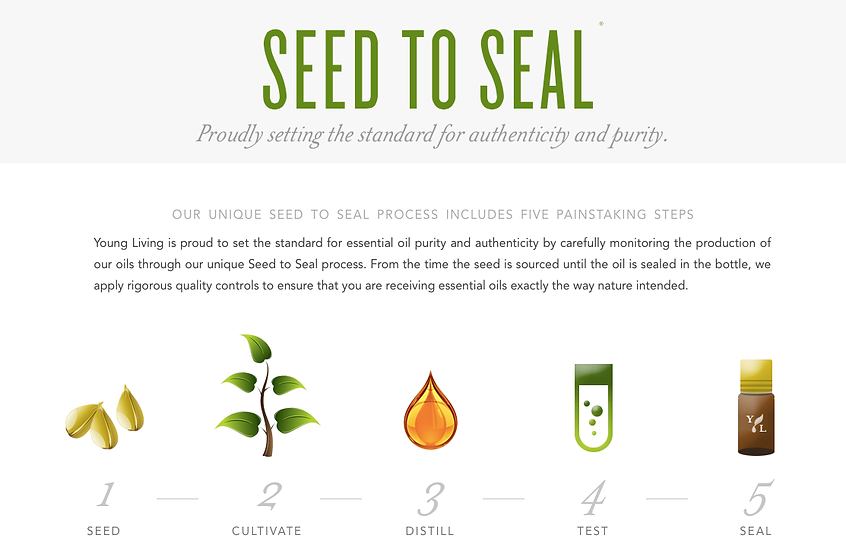 Seed to Seal.png