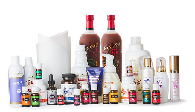 YL products.jpg