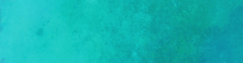 turquoise%20background%20Tracy%20Griffit