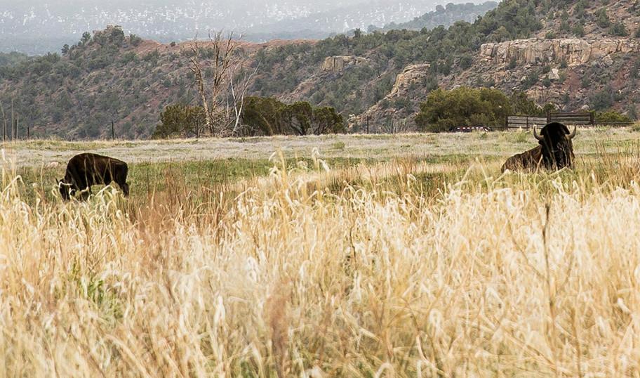 Skyrider_Wilderness_Ranch—TABIONA,_UTAH,