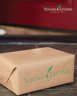 young living package on doorstep.jpg