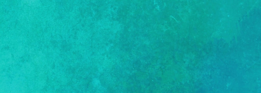 turquoise%2520background%2520Tracy%2520G