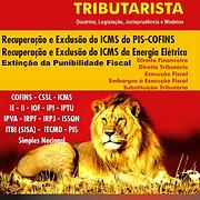 Tributarista - 0521.png