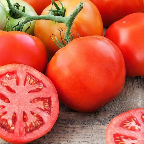 Tomato Delicious
