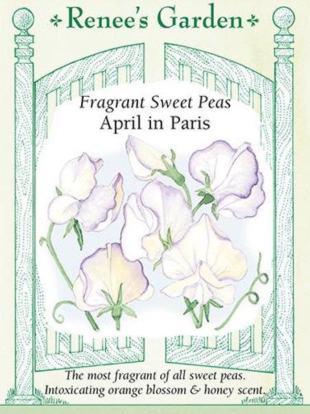 Renee's Garden Fragrant Sweet Peas April in Paris Seed Packet