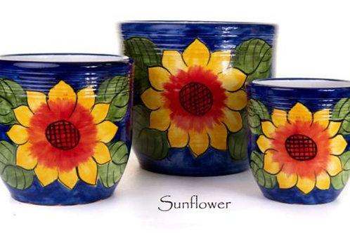 Sunflower Madrid Planters