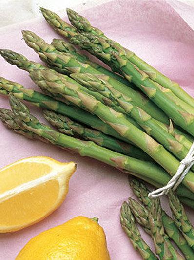 Asparagus, Mary Washington (roots)