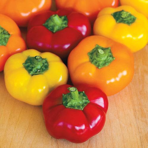 Hungarian Stuffing Blend Pepper