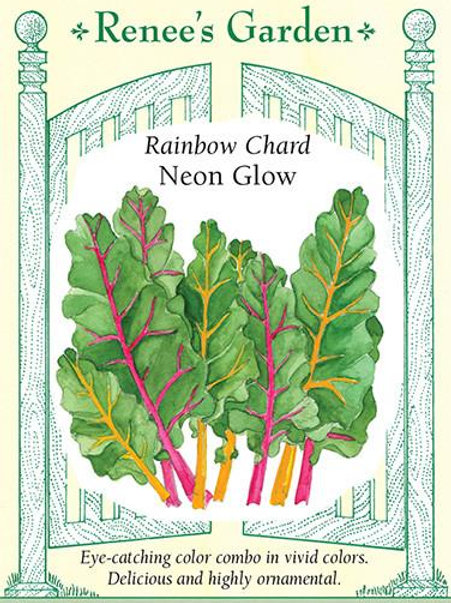 Renee's Garden Rainbow Chard Neon Glow Seed Packet