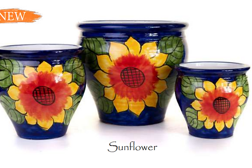 Sunflower Coco Planters