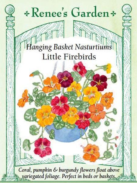 Renee's Garden Hanging Basket Nasturtiums Little Firebirds Seed Packet